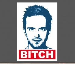 Bitch Breaking Bad Sticker for car botter box phone decals bulk pack laptop mac phone box stickers