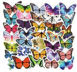 Beautiful Butterfly Sticker bulk pack from wholesale sticker supplier